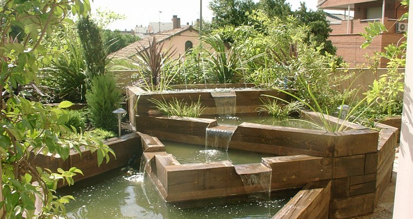 Estanques en el jardin algas estanque jardin estanque for Estanque jardin